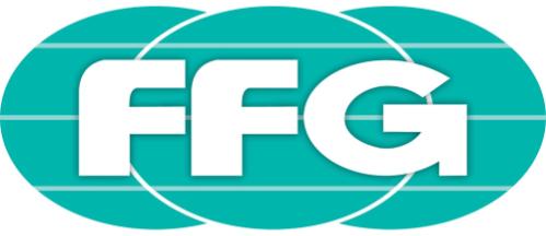 Unternehmensberatung für die Firma FFG Group